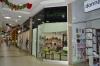 kiwi-store (2)