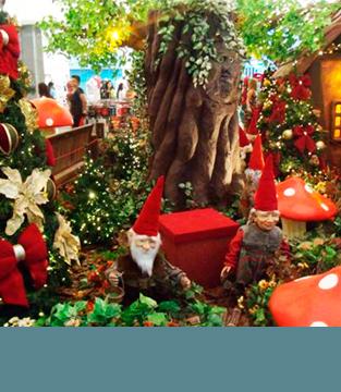 A Chegada do Papai Noel!
