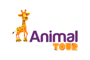 Animal Tour